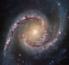 This new Hubble image shows NGC 1566, a beautiful galaxy located approximately 40 million light-years away in the constellation of Dorado (The Dolphinfish). NGC 1566 is an intermediate spiral galaxy, meaning that while it does not have a well defined bar-shaped region of stars at its centre — like barred spirals — it is not quite an unbarred spiral either (heic9902o). The small but extremely bright nucleus of NGC 1566 is clearly visible in this image, a telltale sign of its membership of the Seyfert class of galaxies. The centres of such galaxies are very active and luminous, emitting strong bursts of radiation and potentially harbouring supermassive black holes that are many millions of times the mass of the Sun. NGC 1566 is not just any Seyfert galaxy; it is the second brightest Seyfert galaxy known. It is also the brightest and most dominant member of the Dorado Group, a loose concentration of galaxies that together comprise one of the richest galaxy groups of the southern hemisphere. This image highlights the beauty and awe-inspiring nature of this unique galaxy group, with NGC 1566 glittering and glowing, its bright nucleus framed by swirling and symmetrical lavender arms. This image was taken by Hubble's Wide Field Camera 3 (WFC3) in the near-infrared part of the spectrum. A version of the image was entered into the Hubble's Hidden Treasures image processing competition by Flickr user Det58.